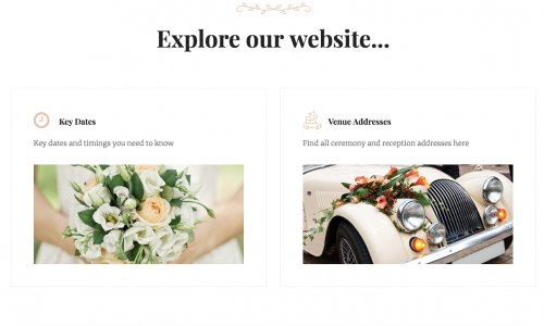 Wedding website example with dates and address